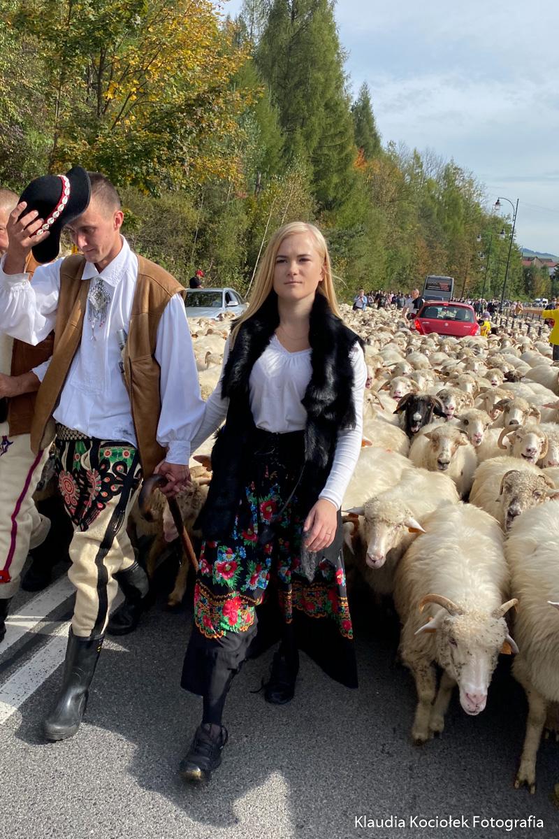 Redyk w Szczawicy - 10.10.2020