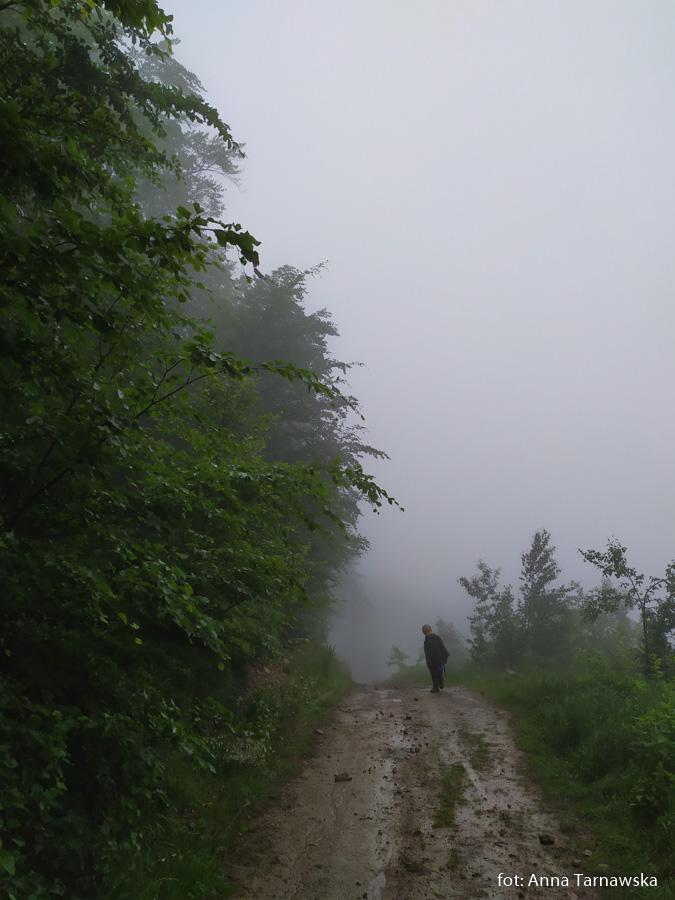 Tadeusz - najmłodszy na Głównym Szlaku Beskidzkim