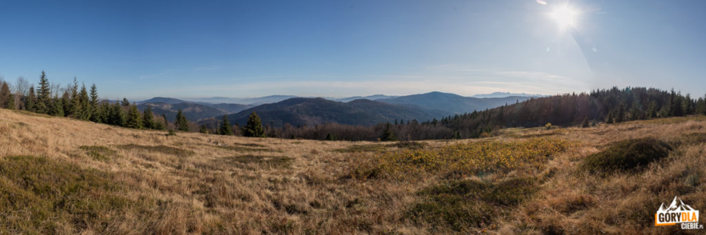 Panorama ze szczytu Kutrzycy przez Polanę Skalne: od lewej widać Modyń (1029 m), Pasmo Jaworzyny Krynickiej, Wysoki Wierch i Kiczorę Kamienicką, Pasmo Przehyby i Radziejowej, Góry Lewockie, Małe Pieniny, Lubań (1225 m), Gorc (1228 m) i Tatry Wysokie