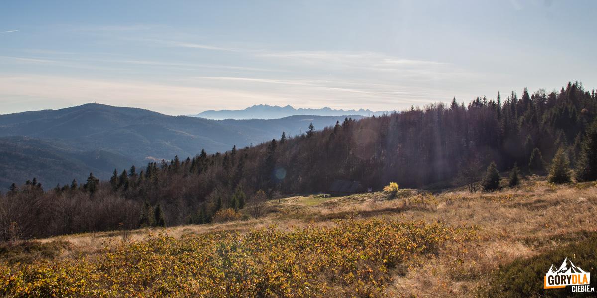 Widok z Polany Skalne na Gorc (1228 m) i Tatry Wysokie