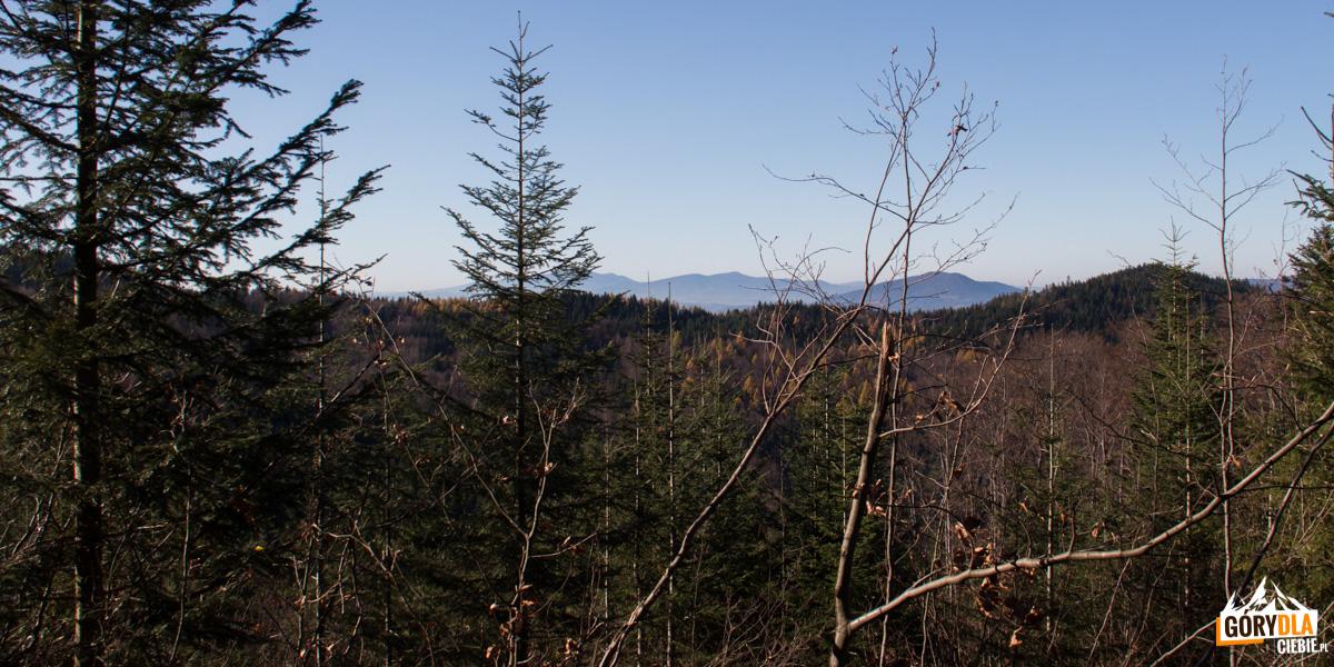 Widok z drogi na polanę Francula na Babią Górę, Police i Luboń Wielki