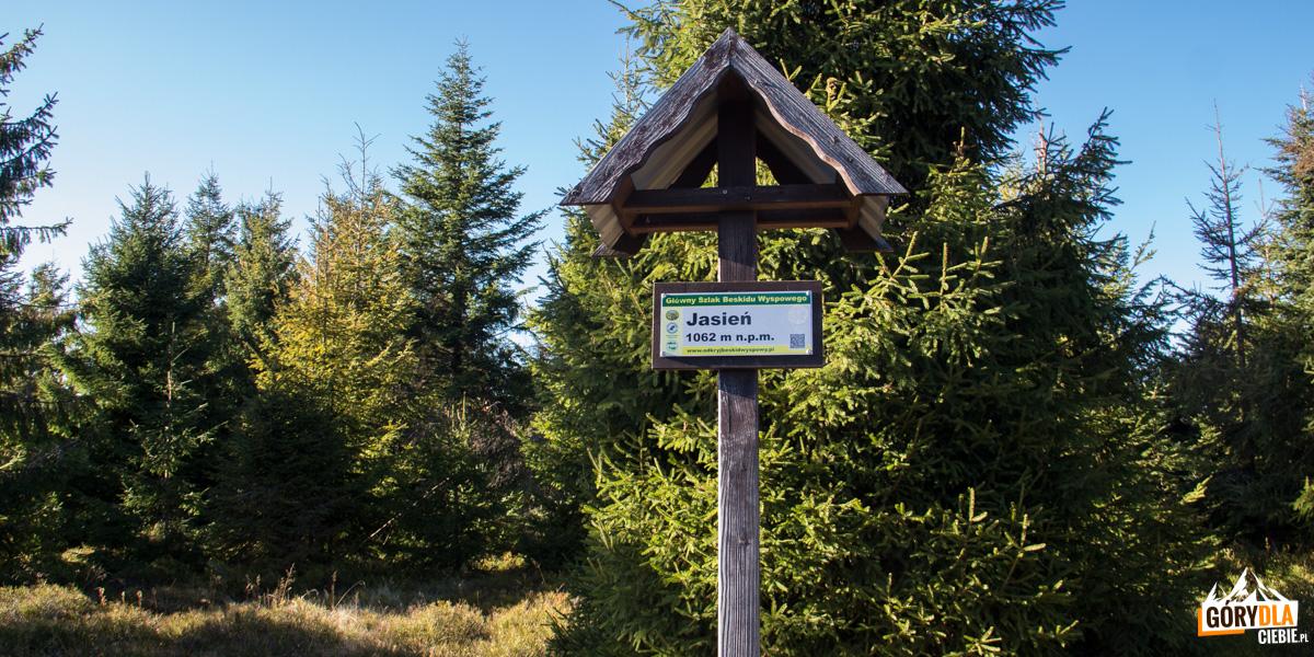 Na szczycie Jasienia (1062 m)