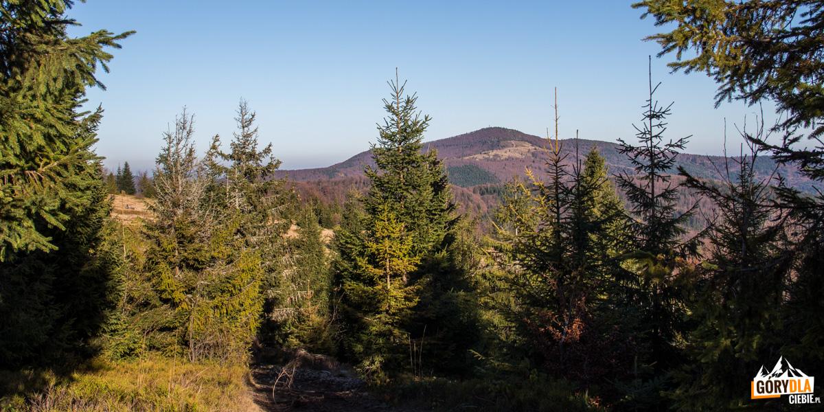 Widok na Mogielicę (1170 m) spod szczytu Jasienia