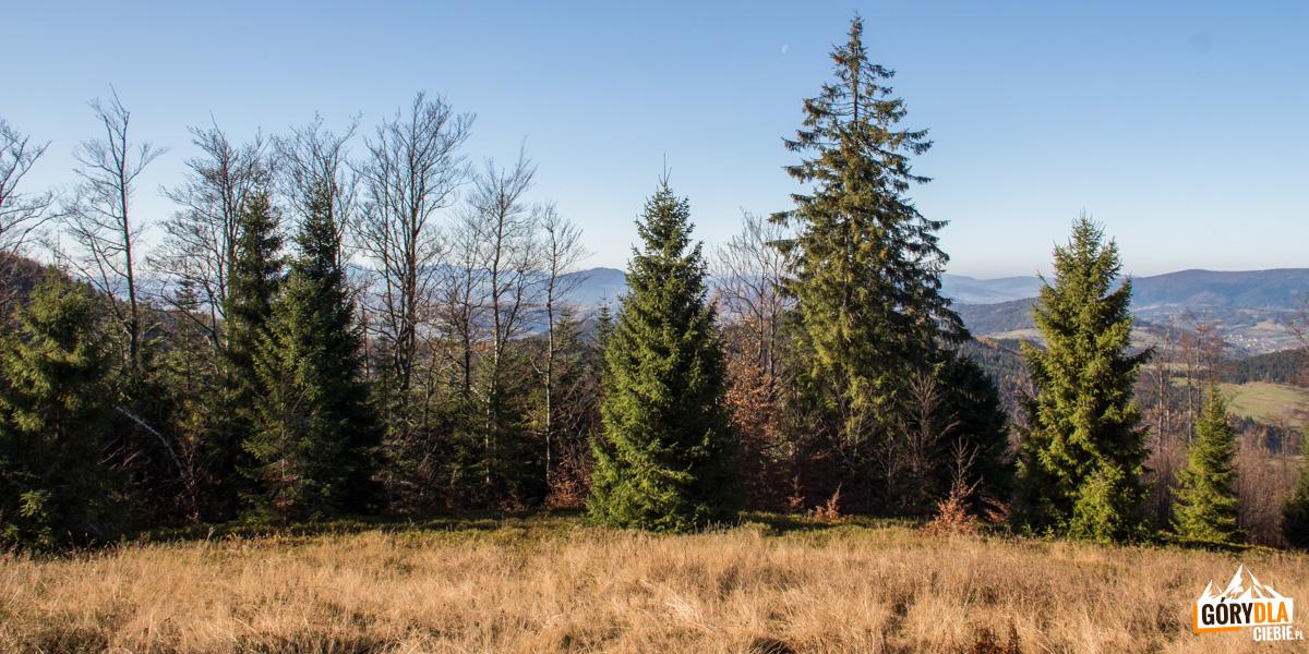 Widok z polany Francula na Babią Górę, Police i Luboń Wielki