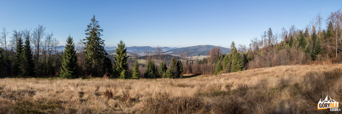 Panorama z polany Francula