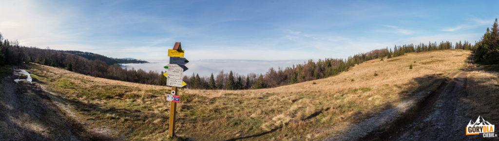 Panorama z Hali Kamińskiego