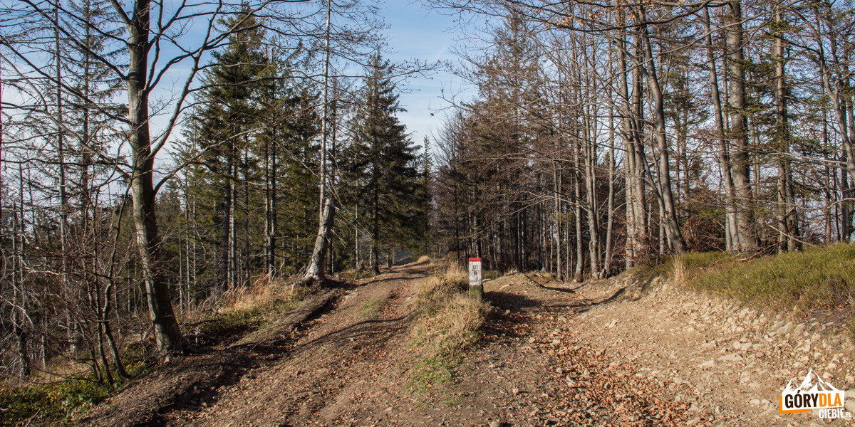 Granica Polsko-Słowacka na głównej grani pomiędzy Małą Babią Górą, a Pilskiem (czerwony szlak)