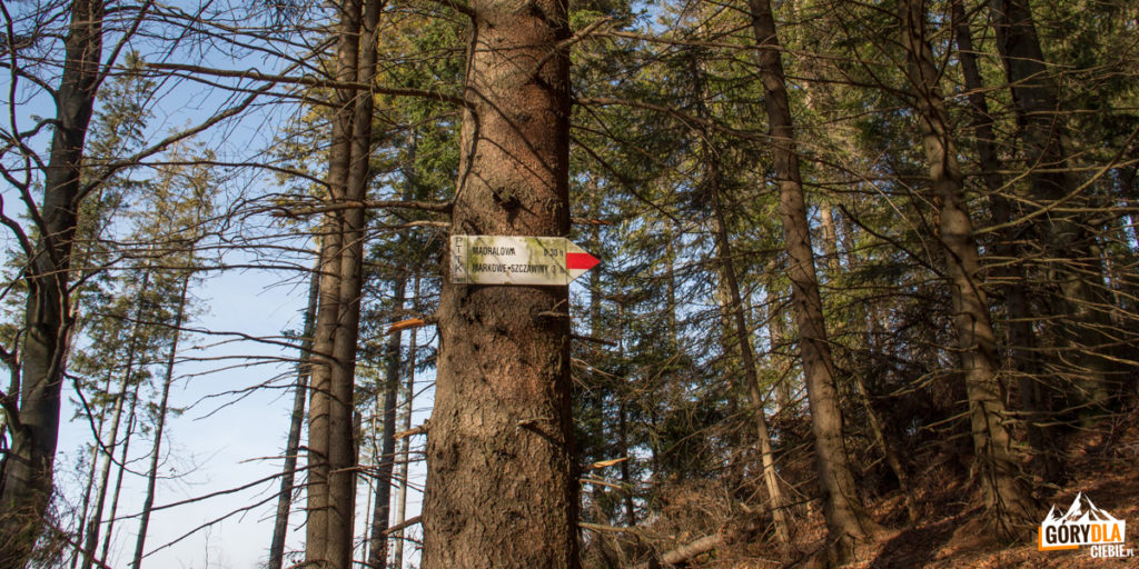 Drogowskaż na Mędralową przy zielonym szlaku na Małą Mędralową