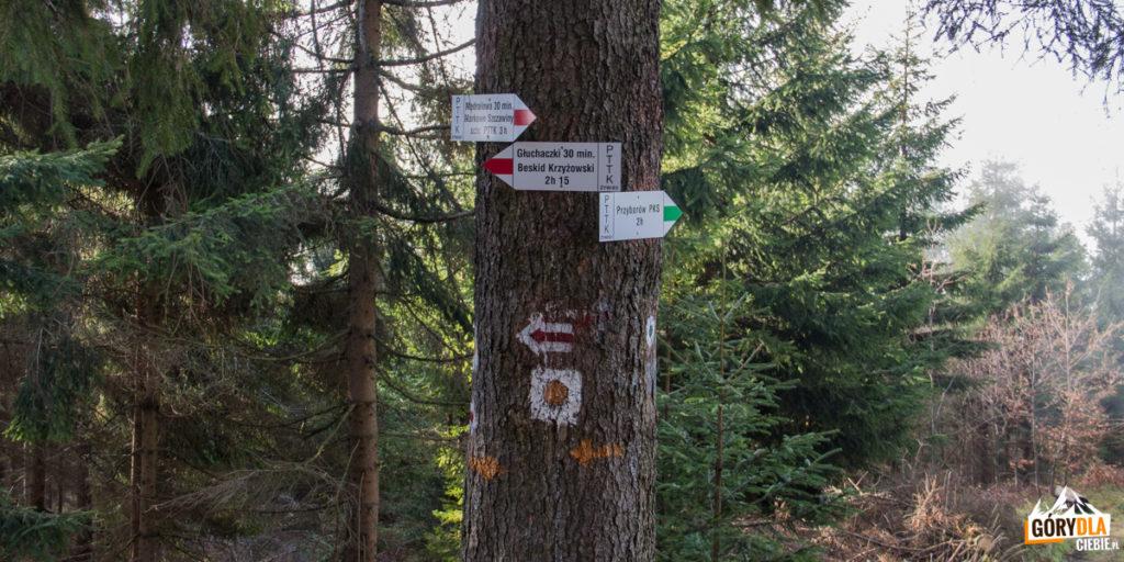 Zielony szlak z głównej grani w kierunku Małej Mędralowej