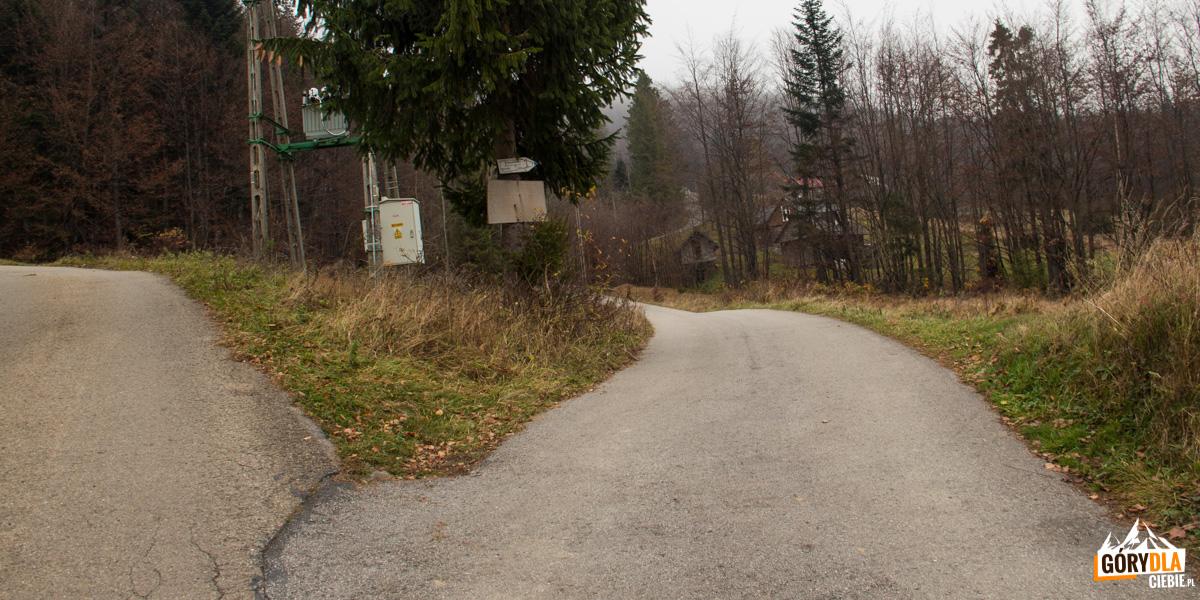 Niebieski szlak z Koszarawy-Bystra na Przełęcz Klekociny