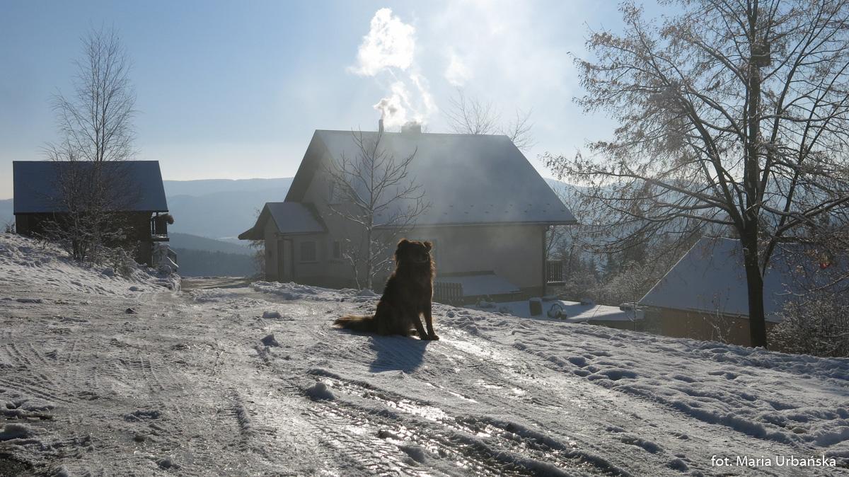 Mroźne widoki z rejonu Łopusza