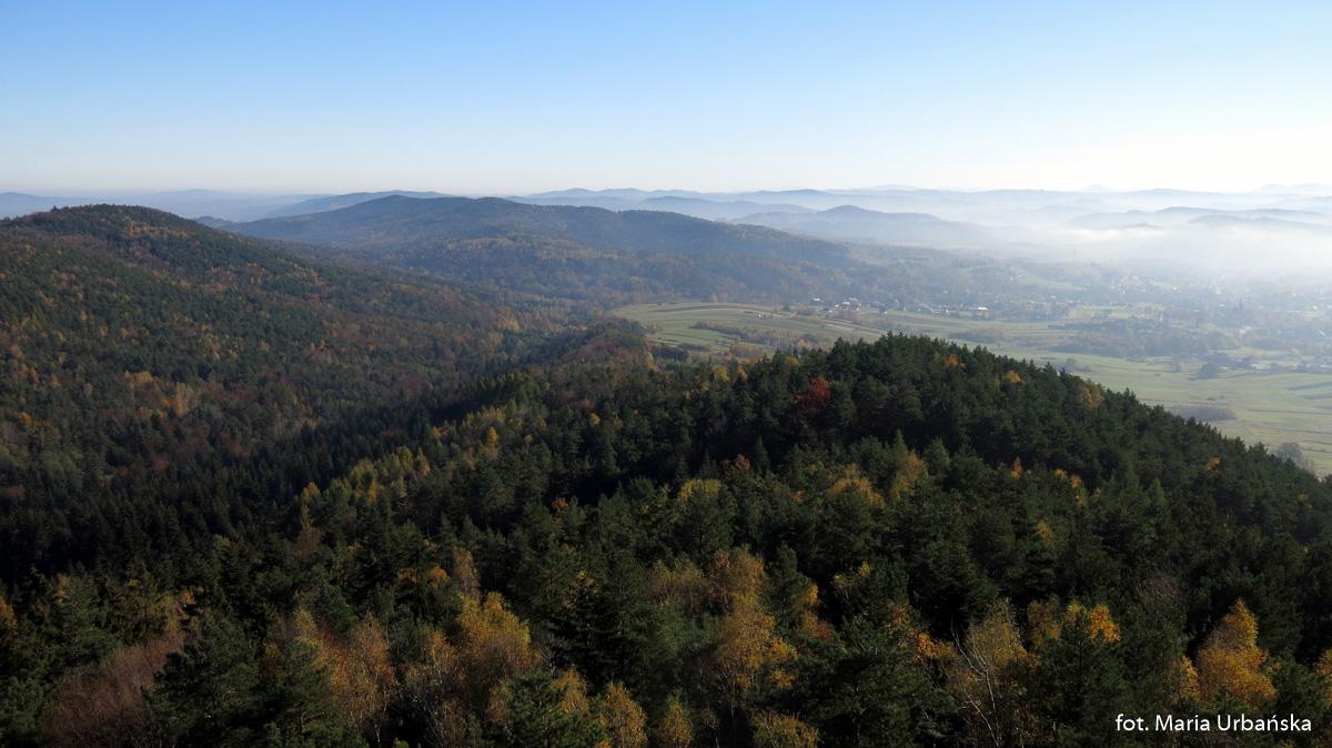 Widoki z wieży widokowej w Szpilówce