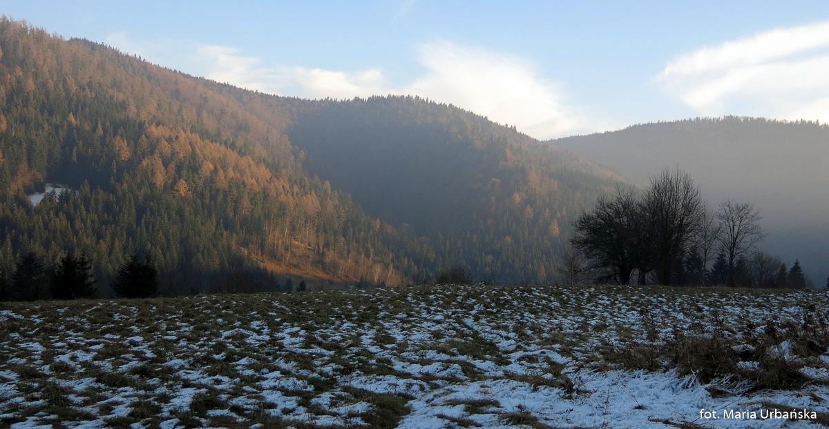 Widoki z polany Polanki na Suhorę (1000 m) i Obidowiec (1106 m) - droga ze Starych Wierchów do Poręby Górnej