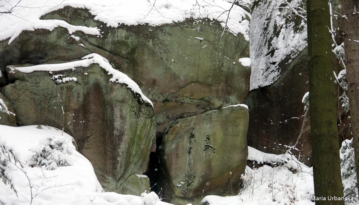 Rezerwat Diable Skały w Bukowcu