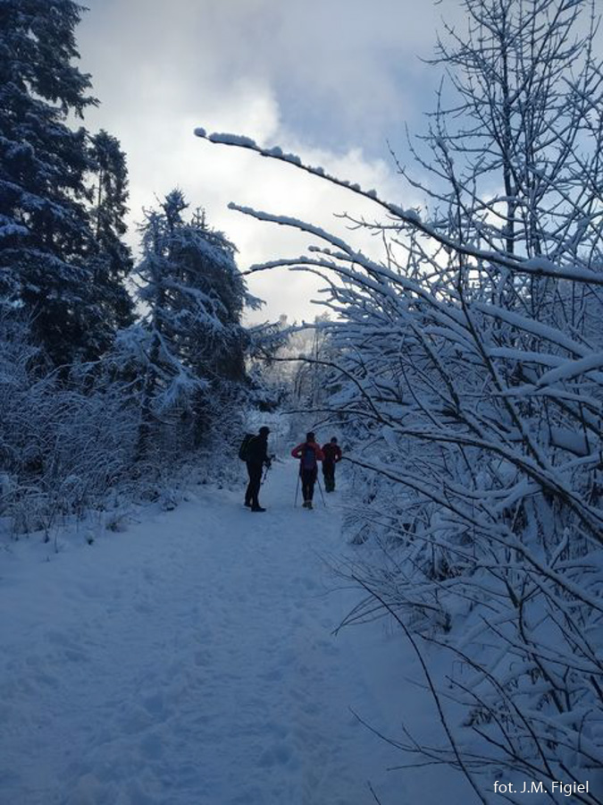 Zimowa droga na Lubań