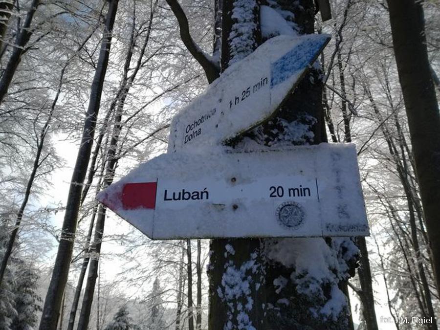 Drogowskazy na szlaku na Lubań