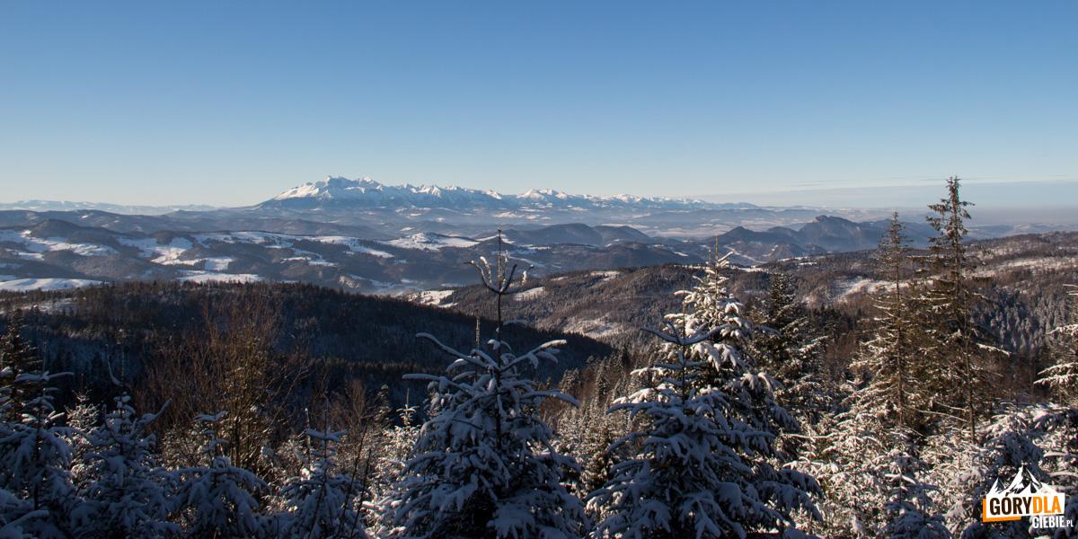 Panorama ze ścieżki spod szczytu Wielkiego Rogacza