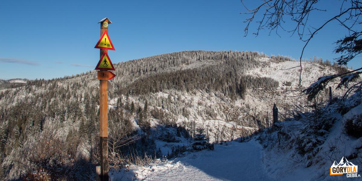 Widok ze ścieżki spod szczytu Wielkiego Rogacza na Radziejową