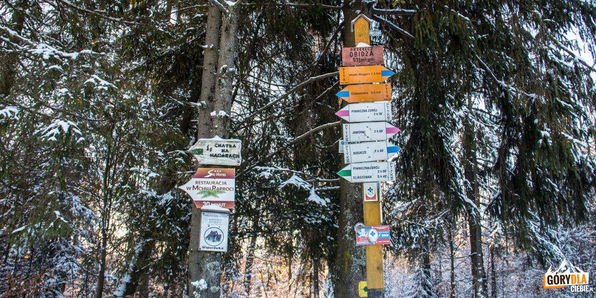 Sieć szlaków na Przełęczy Obidza