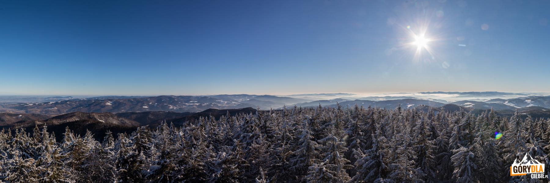 Widok z wieży na Radziejowej Pasmo Jaworzyny Krynickiej w Beskidzie Sądeckim, Beskid Niski oraz słowackie Góry Czerchowskie i Góry Lewockie