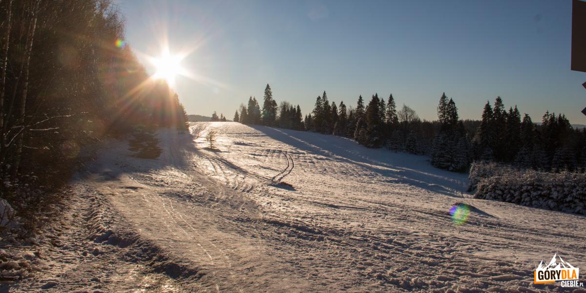 Polana Litawcowa (952 m) na Przełęczy Obidza