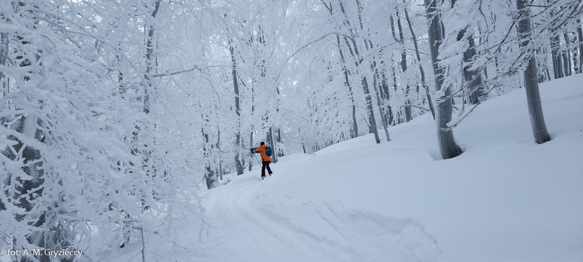 Z przełęczy Przysłup na Jasło na skiturach