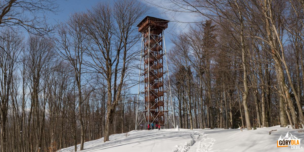 Wieża widokowa naJeleniowatym