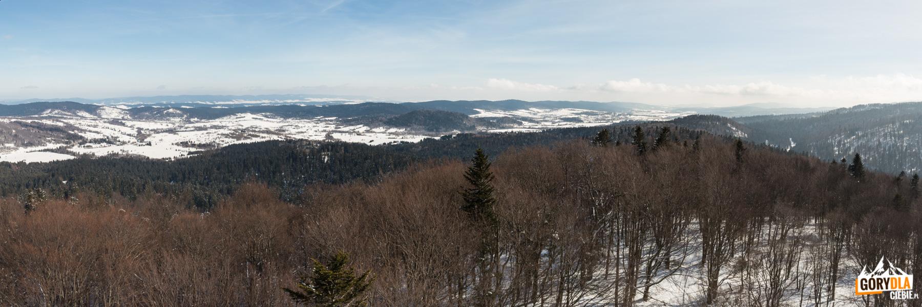 Widok z wieży na Jeleniowatym na dolinę górnego Sanu