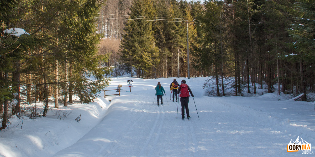 Trasy narciarstwa biegowego w Mucznem