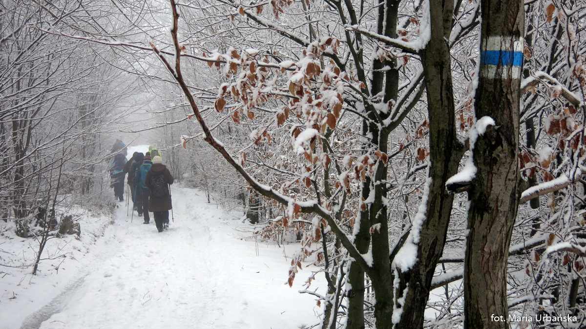 Luboń Wielki zima