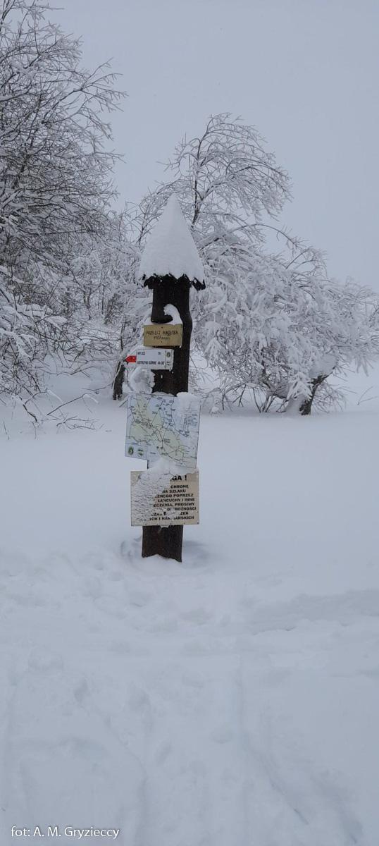 Z Wołosatego na Przełęcz Bukowską