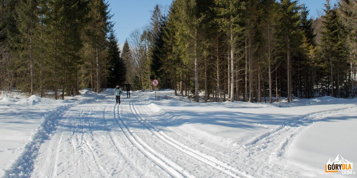Trasy biegowe w Mucznem