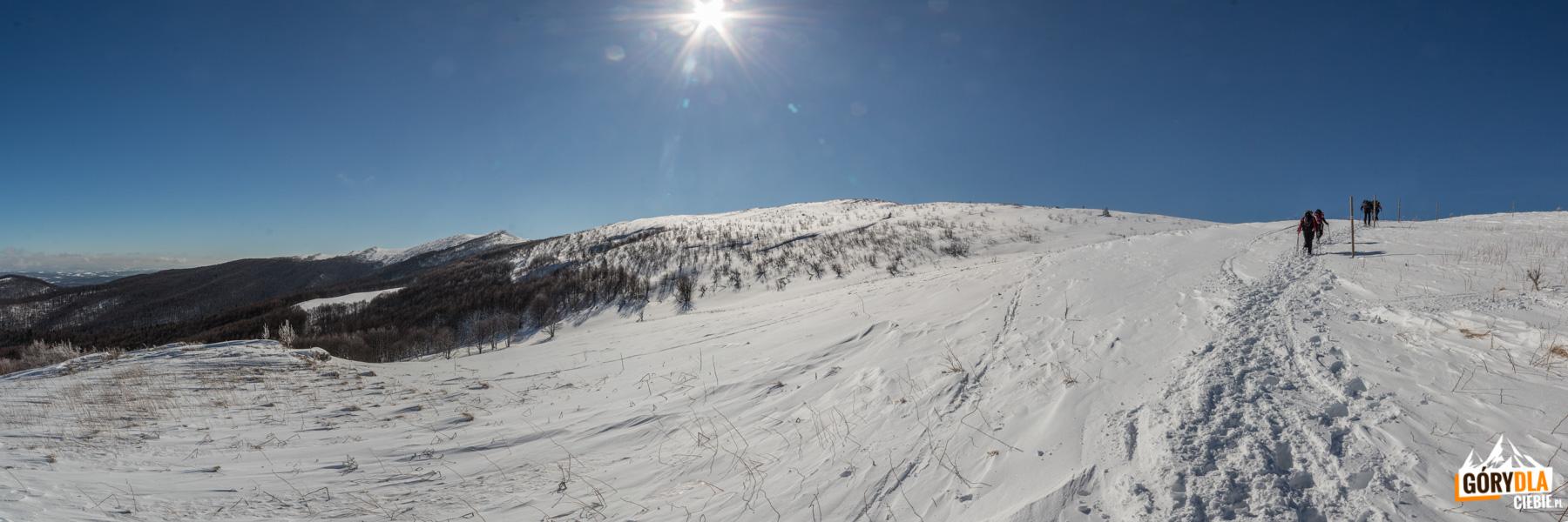 Podejście pod kulminację grani o nazwie Szołtynia (1201 m)