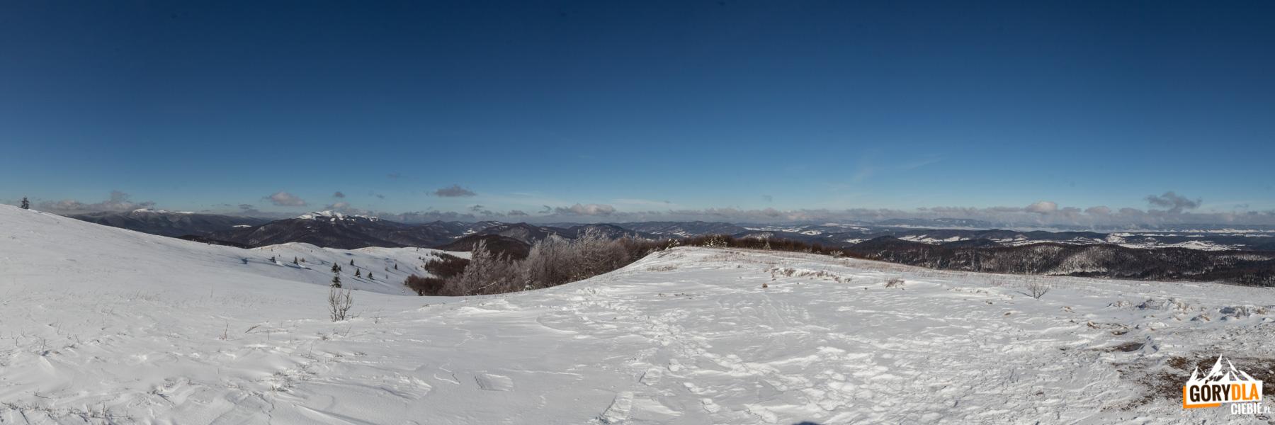 Pierwsze widoki po wyjściu na grań poniżej Szołtynii (1201 m)