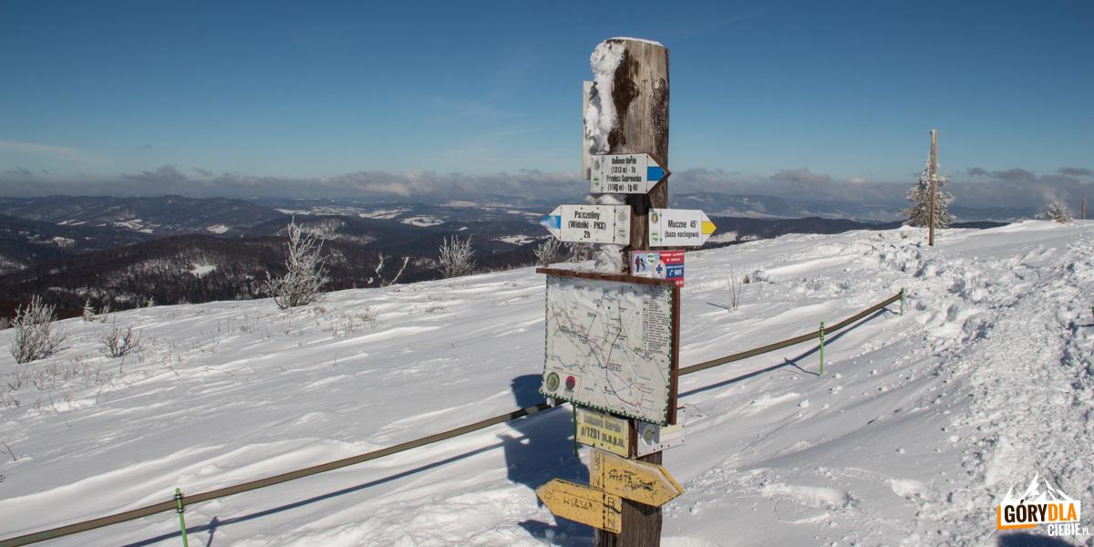 Grań Bukowego Berda - pod Szołtynią (1201 m)- tutaj zółty szlak spotyka sie ze szlakiem niebieskim biegnącym na Bukowe Berdo z Pszczelin – Widełek
