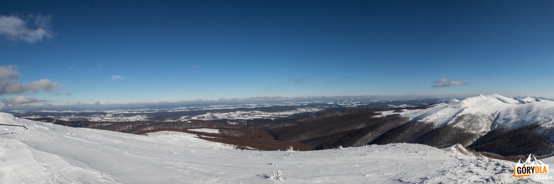 Widoki ze szczytu Bukowego Berda na Bieszczadzki Worek