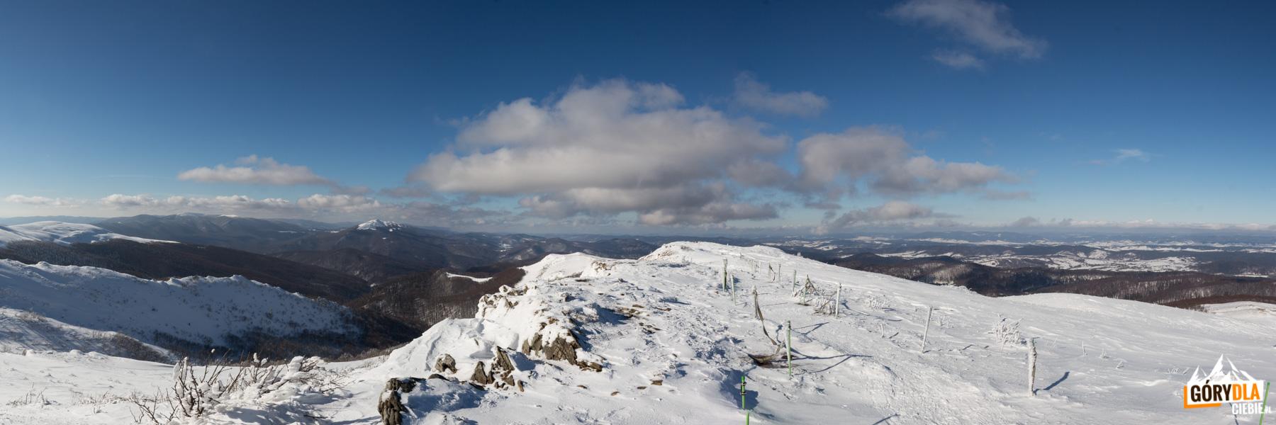 Panorama z grani Bukowego Berda w kierunku Połoniny Caryńskiej