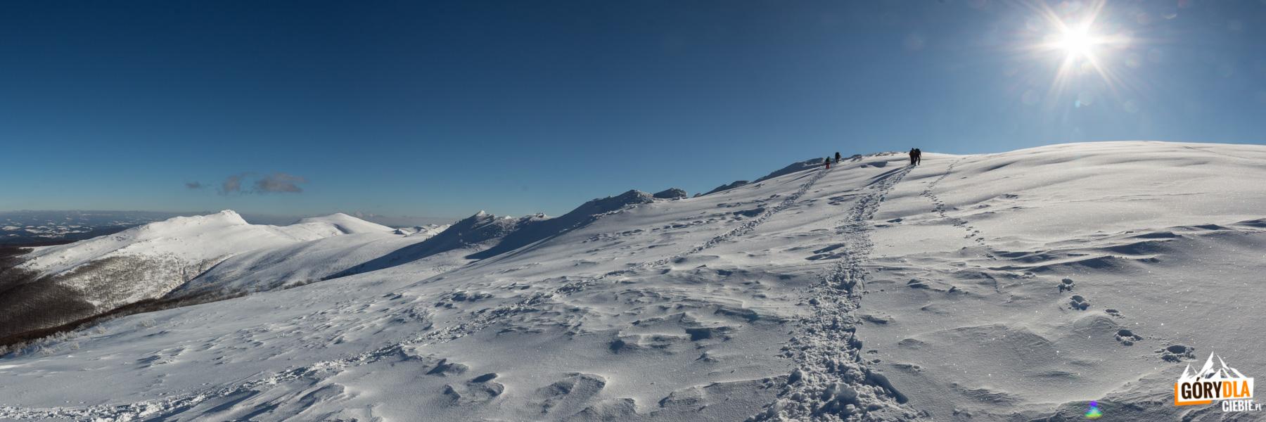 Wejście na grań Krzemienia (1335 m) od strony Bukowego Berda