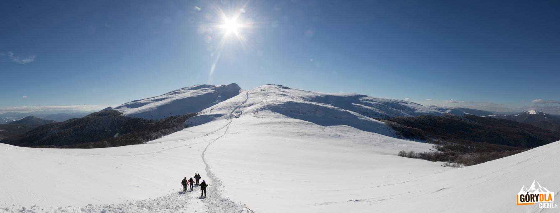 Zejście z Krzemienia na Przełęcz Goprowską (1160 m)