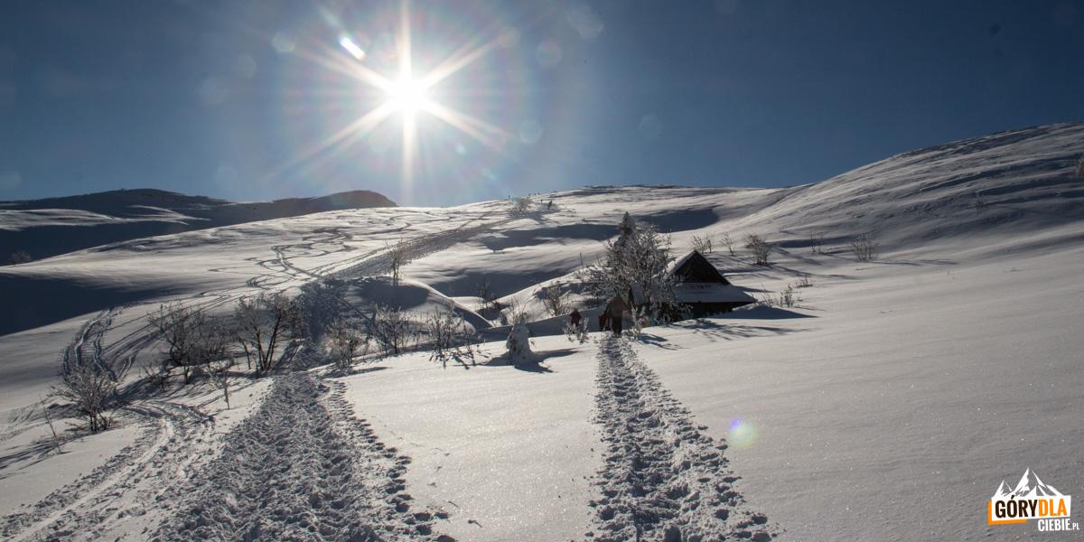 Drewniana wiata na Przełęczy Goprowskiej to popularne miejsce odpoczynku