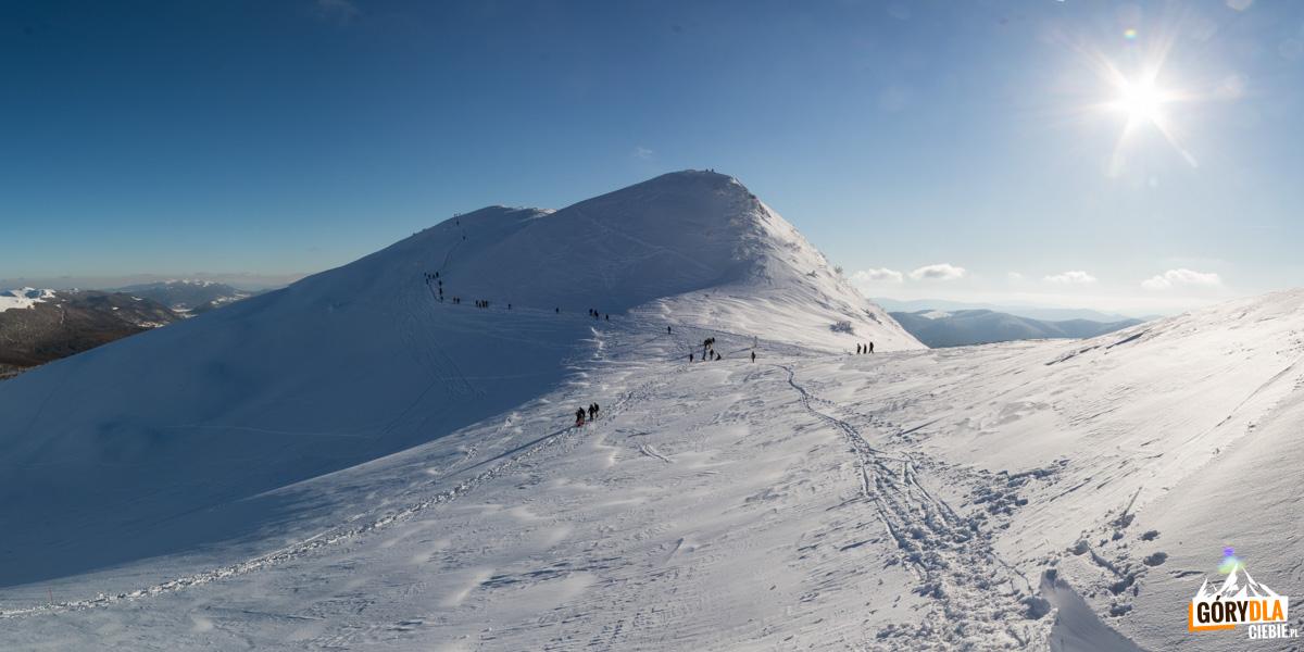 Tarnica (1346 m) – najwyższy szczyt polskich Bieszczadów