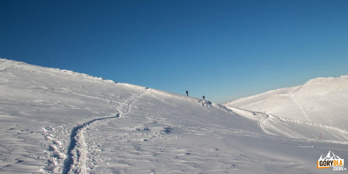 Wędrowcy w drodze na Przełęcz pod Tarnicą