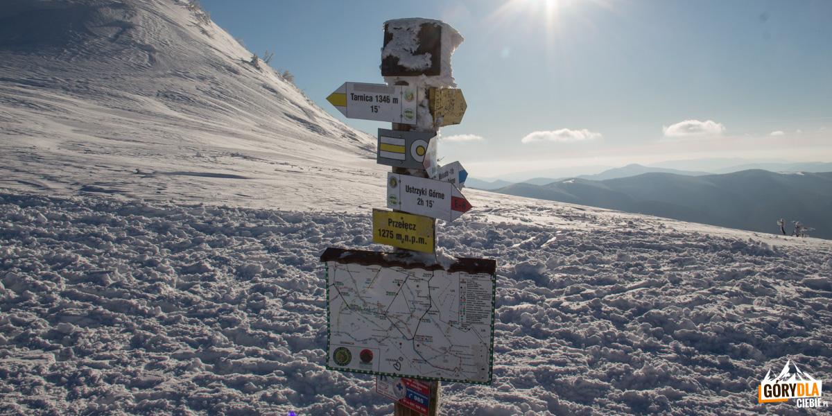 Przełęcz pod Tarnicą (1275 m), stąd tylko 15 min. na szczyt Tarnicy (1346 m) – najwyższy szczyt polskich Bieszczadów