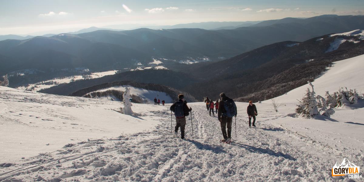 Zejście z Przełęczy pod Tarnicą w stronę Wołosatego