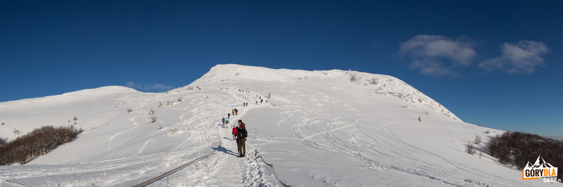 Turyści na szlaku na Przełęcz pod Tarnicą, po prawej stronie Tarnica, po lewej Tarniczka i Szeroki Wierch