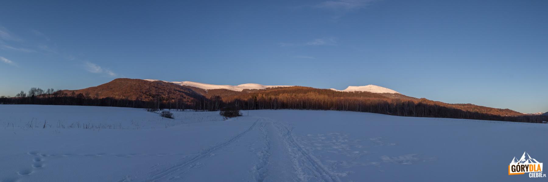 Szeroki Wierch i Tarnica w zachodzącym słońcu - widok z Wołosatego