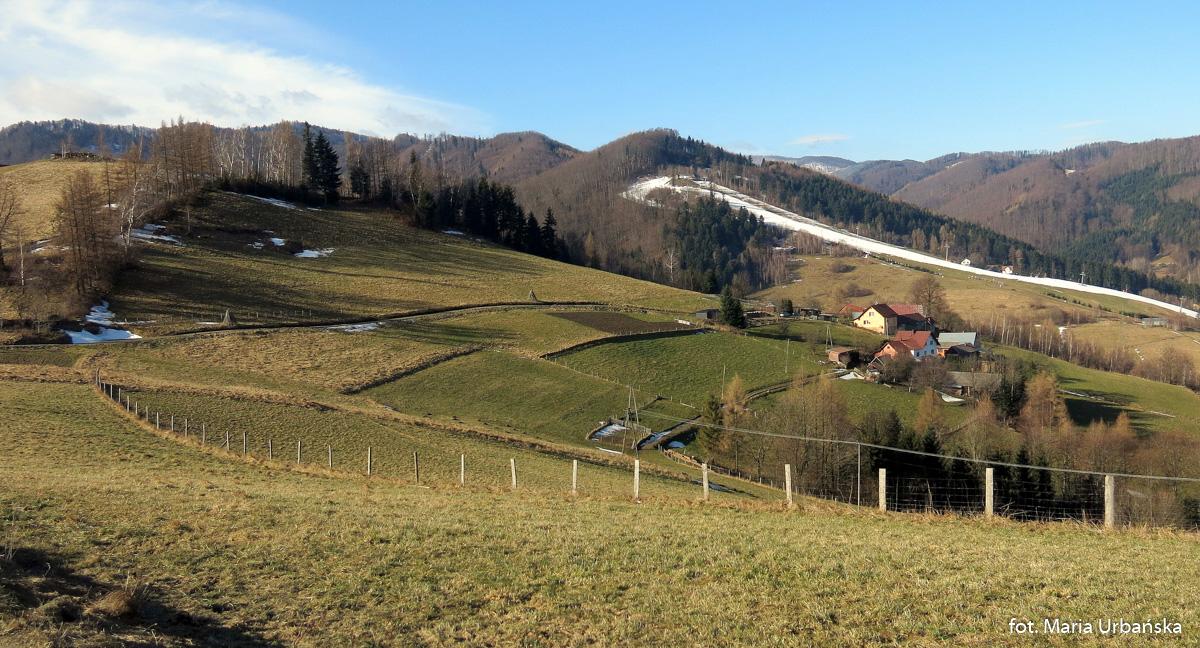 Stok narciarski Ryter Ski widziany spod Brzozowego Gronika (536 m)