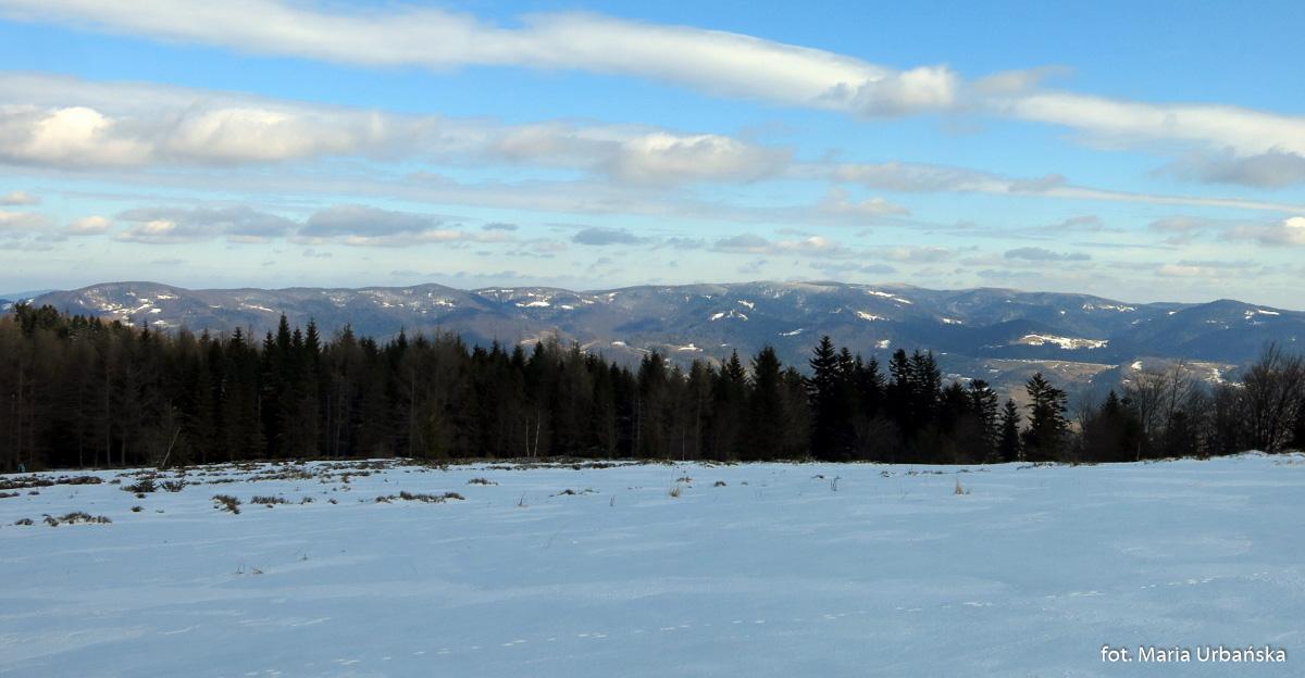 Widok z ze szczytu Niemcowej na Pasmo Jaworzyny Krynickiej i Dolinę Popradu