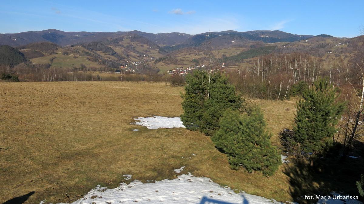 Widok na Pasmo Jaworzyny Krynickiej w rejonie Hali Pisanej (144 m)