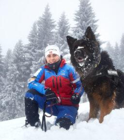 Pies ratowniczy w górach